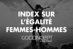 Index femmes hommes